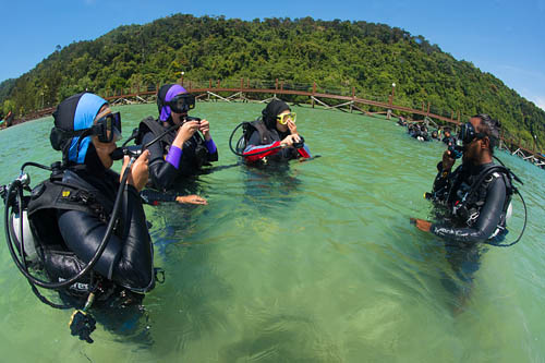 1 Day PADI Re-activate