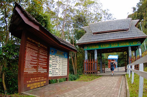 Timpohon Trail Mount Kinabalu